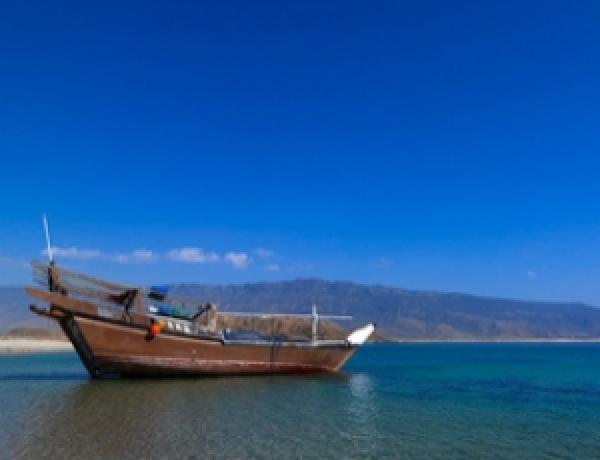 Zanzibar Tourist Activities